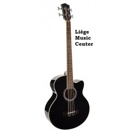 guitare acoustique basse Richwood