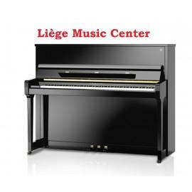 piano Fridolin Schimmel F116T