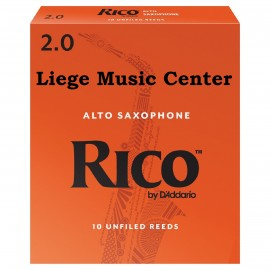 anches saxophone alto Rico (force 2,0)