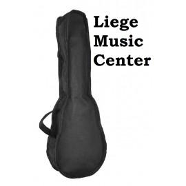 hoes ukulele sopraan Boston