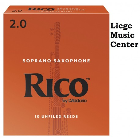 anches saxophone soprano Rico (force 2)