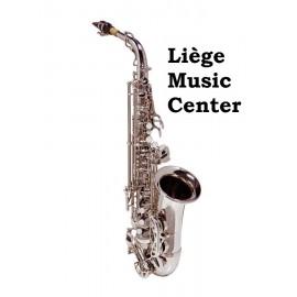 saxofoon alto Stewart Ellis Pro Series zilverkleurig