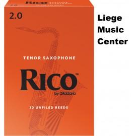 anches saxophone baryton Rico (force 2,0)