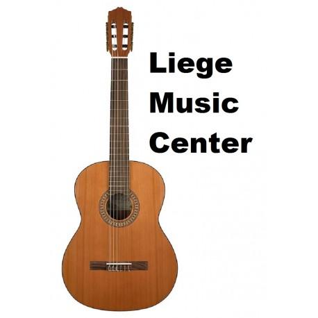 guitare classique Salvador Cortez solid top artist