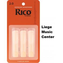 rieten sopraan saxofoon Rico (2)