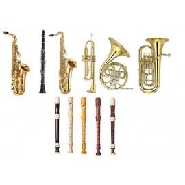 Overige blaasinstrumenten